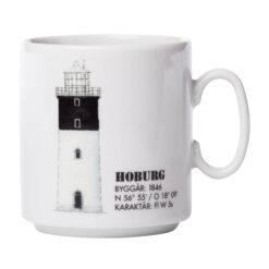 Hoburg19